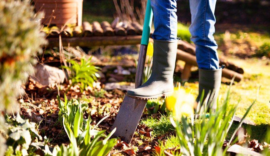 howto start a garden edging business