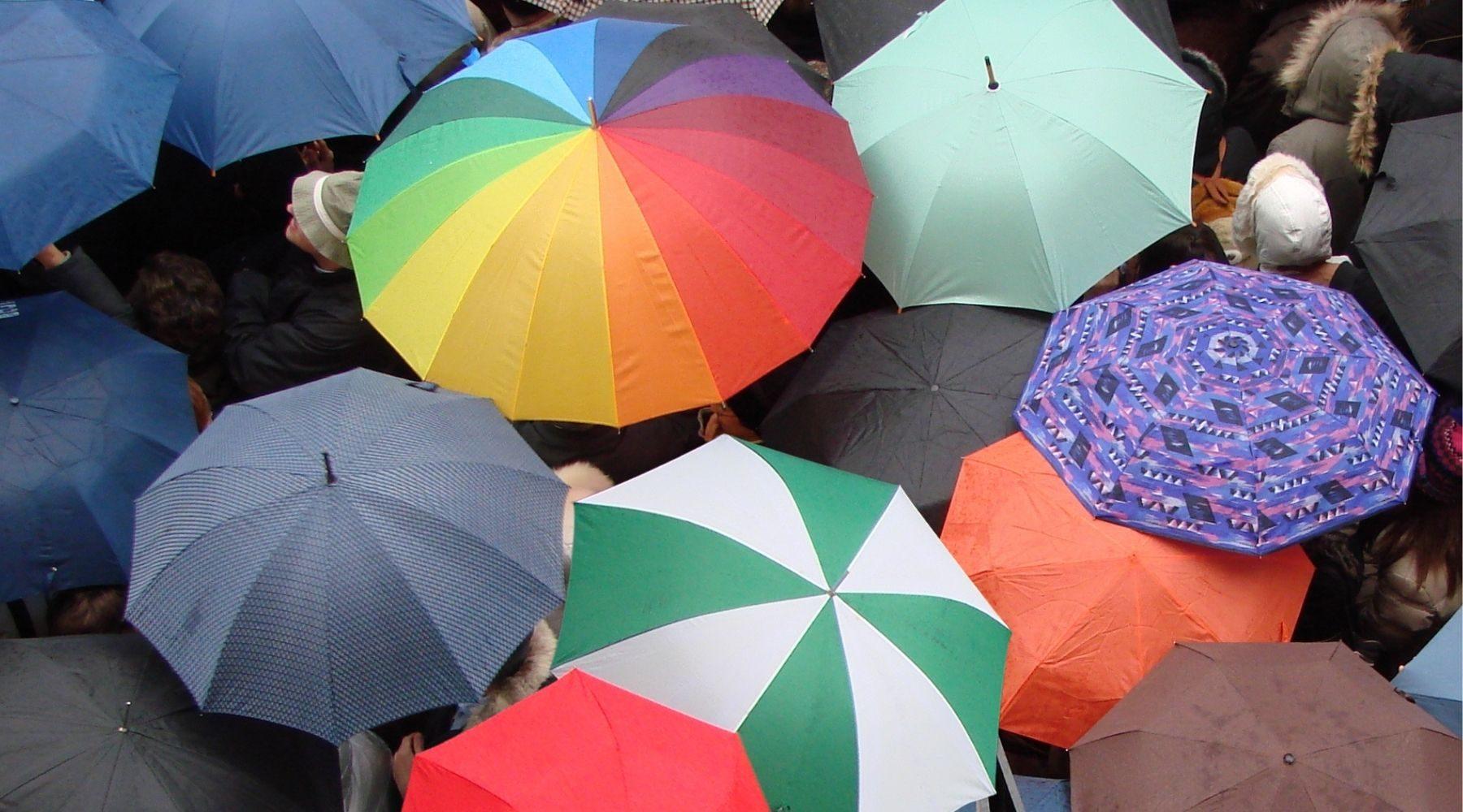 Cheap Umbrellas_Supplied_.450x250