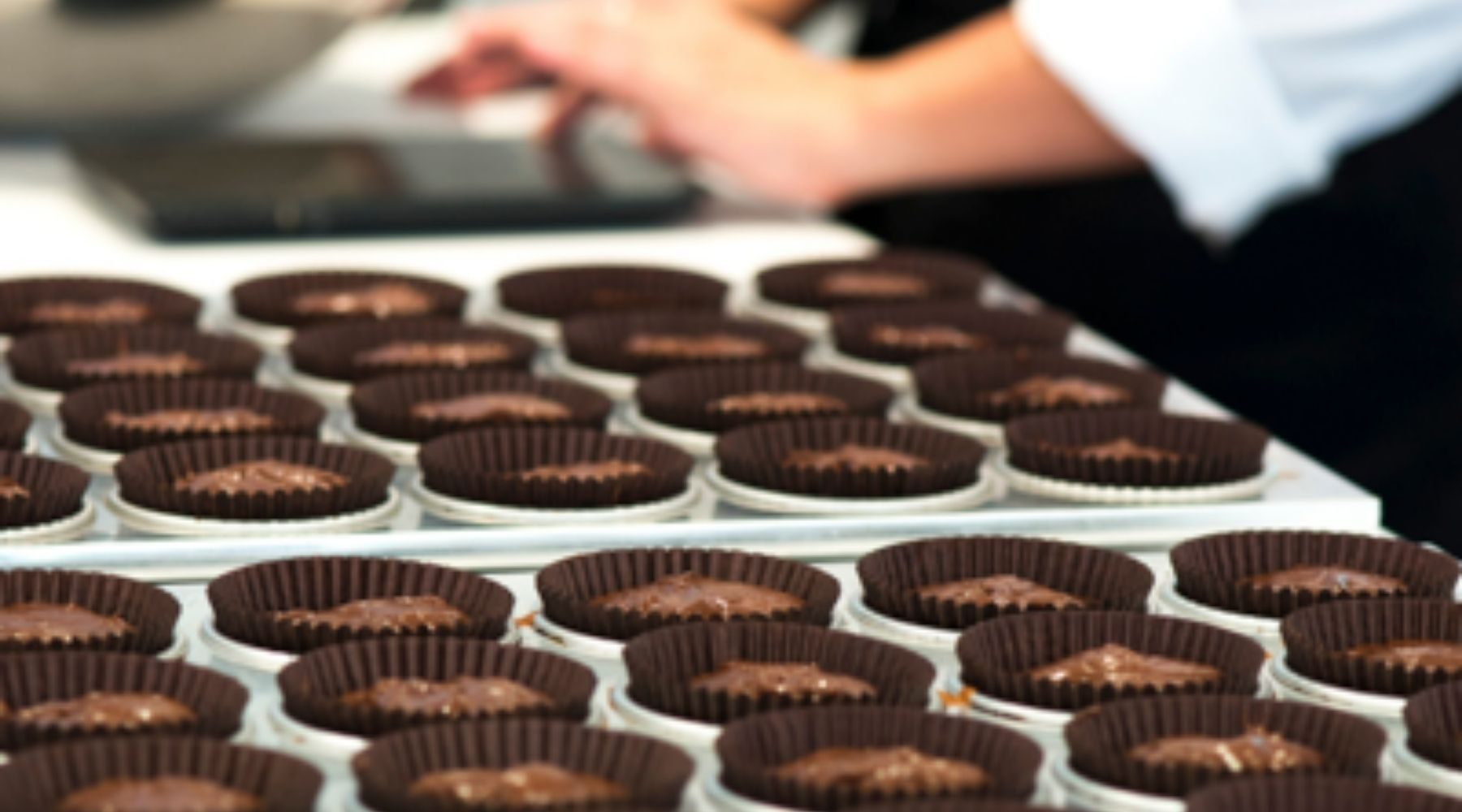 Trays of cupcakes